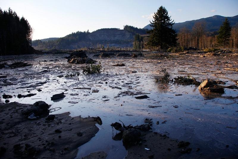 Washington Mudslide At Sunset