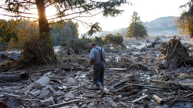 Man Wanders Through Wreckage