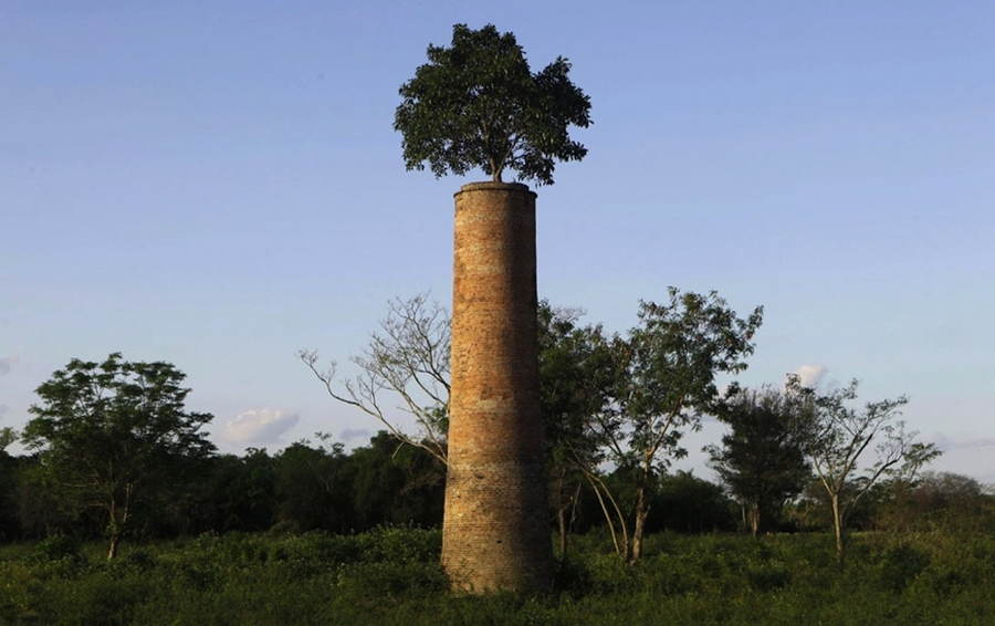 Abandoned Structures In Paraguay