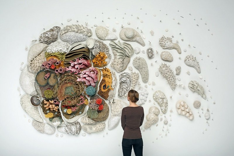 Courtney Mattison's Our Changing Seas