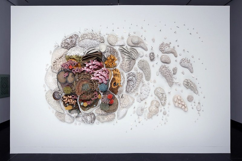 Porcelain Coral Artwork by Courtney Mattison
