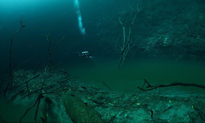 Cenote Angelita in Mexico