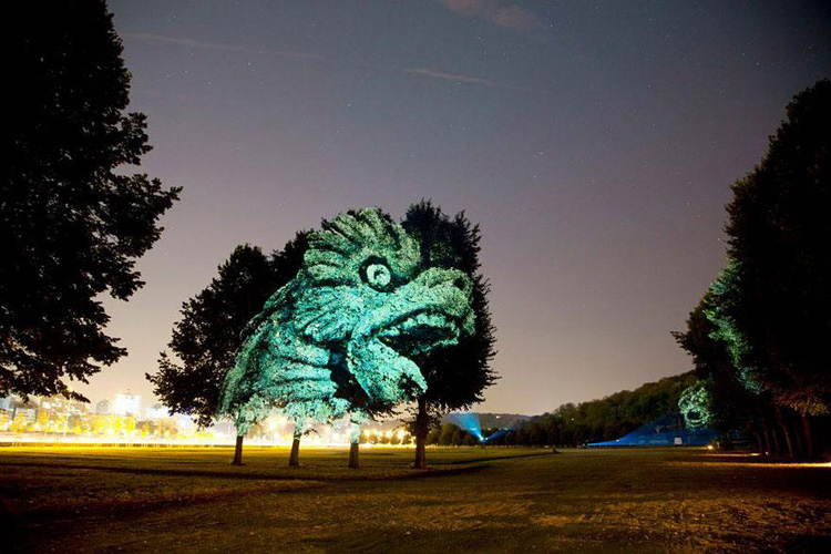 Dragon Projection