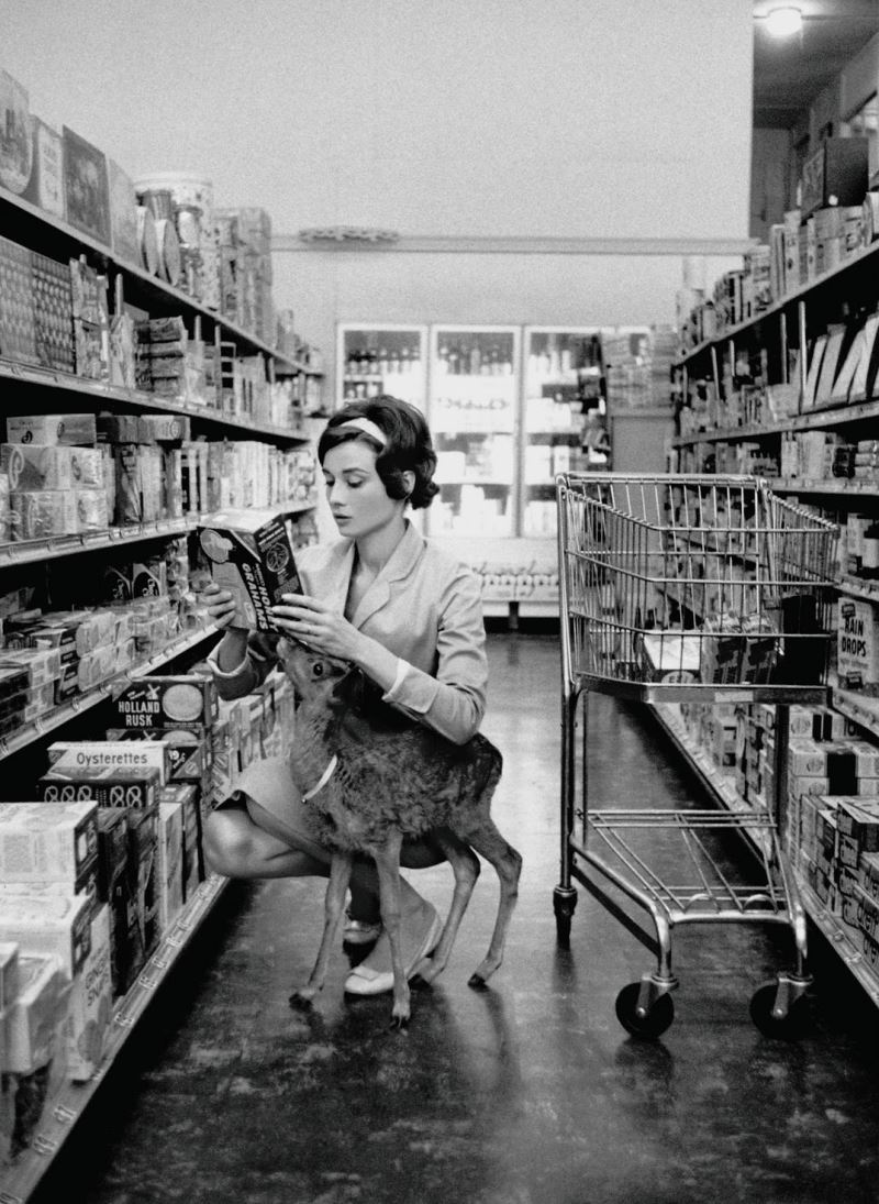 Audrey Hepburn Deer Pet