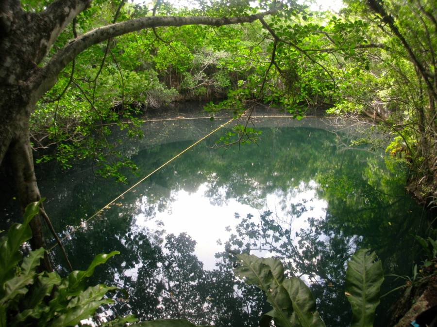 Cenote Angelita Surface