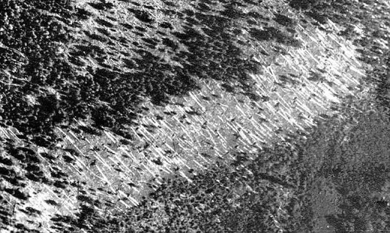 Tunguska Aerial View