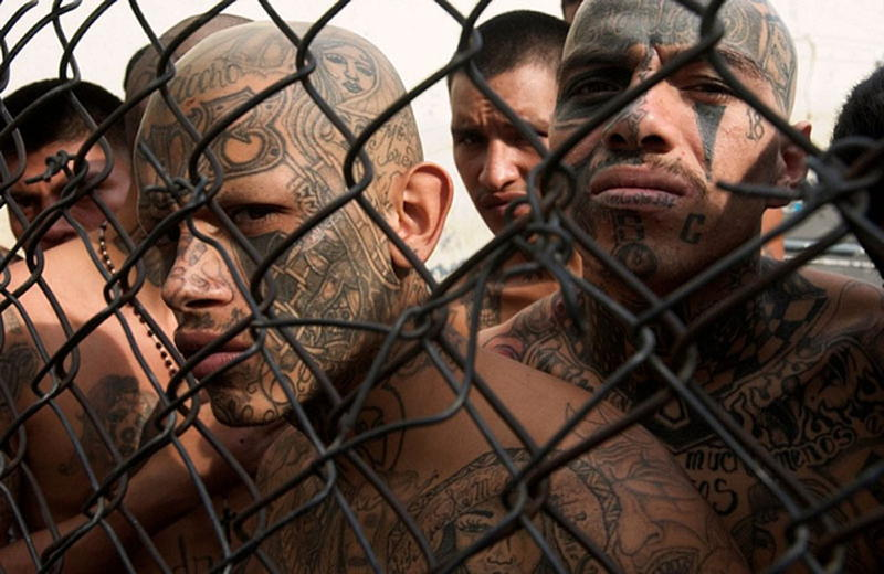 The Most Brutal Gangs Around The World