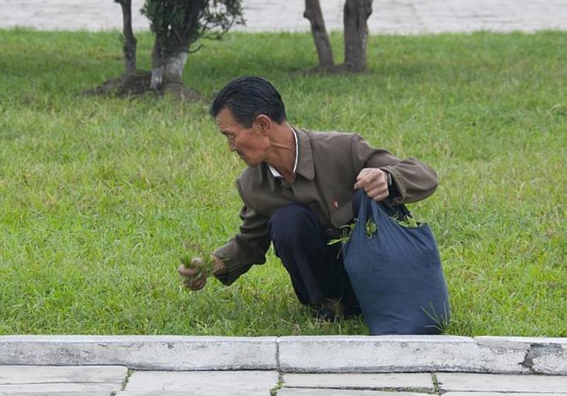 North Korea Photographs Starvation