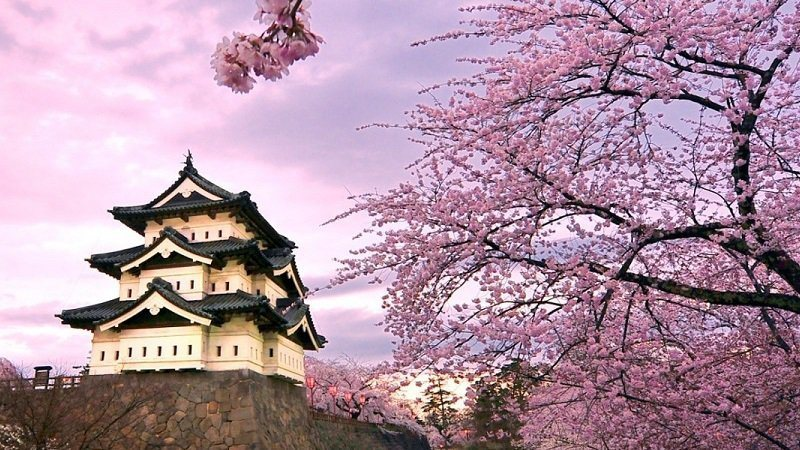 Spring Blooms At Hirosaki Castle