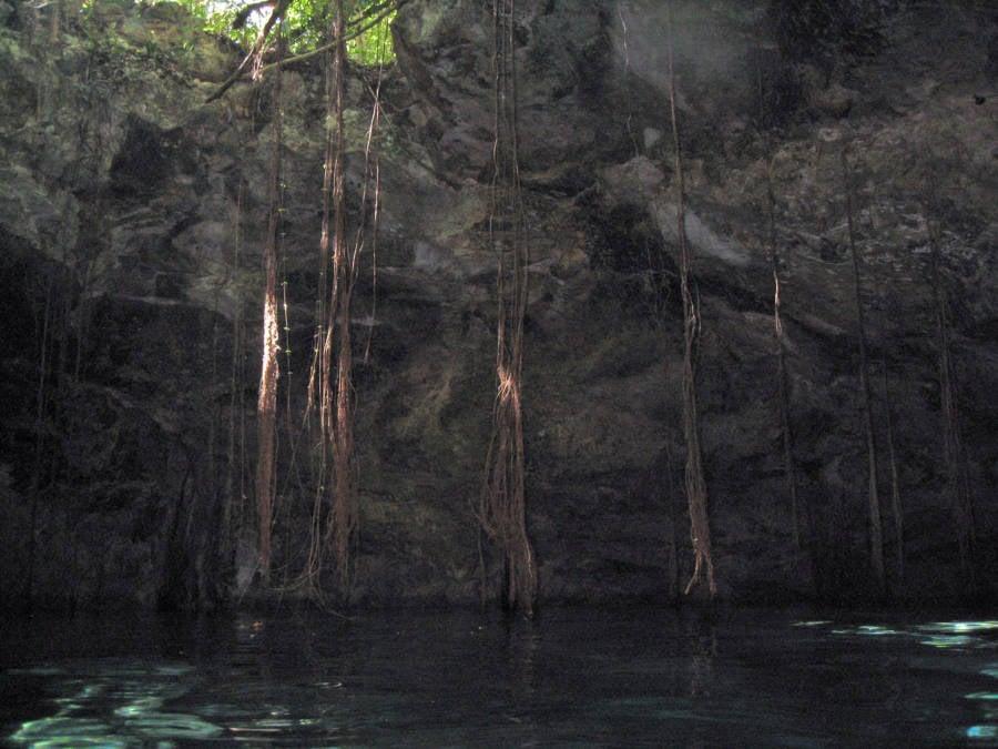 Sunlit Sinkhole