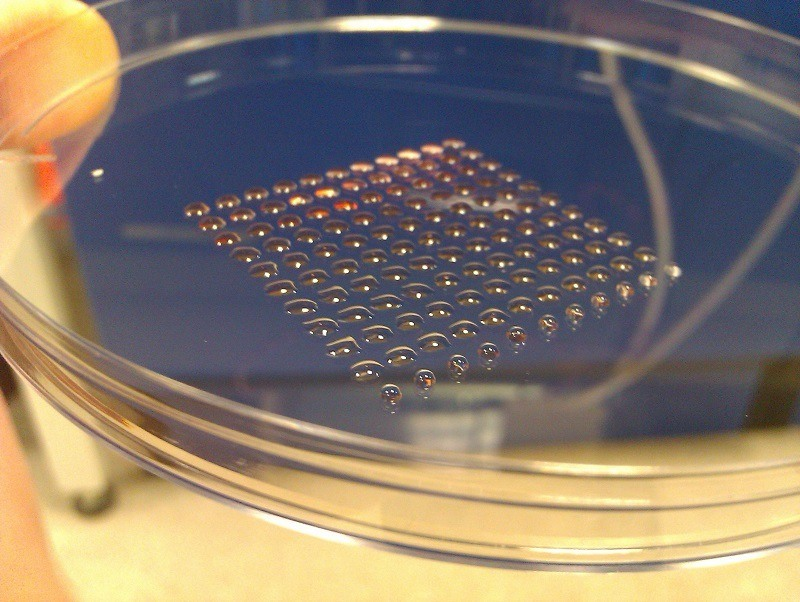 Living Stem Cells Printed