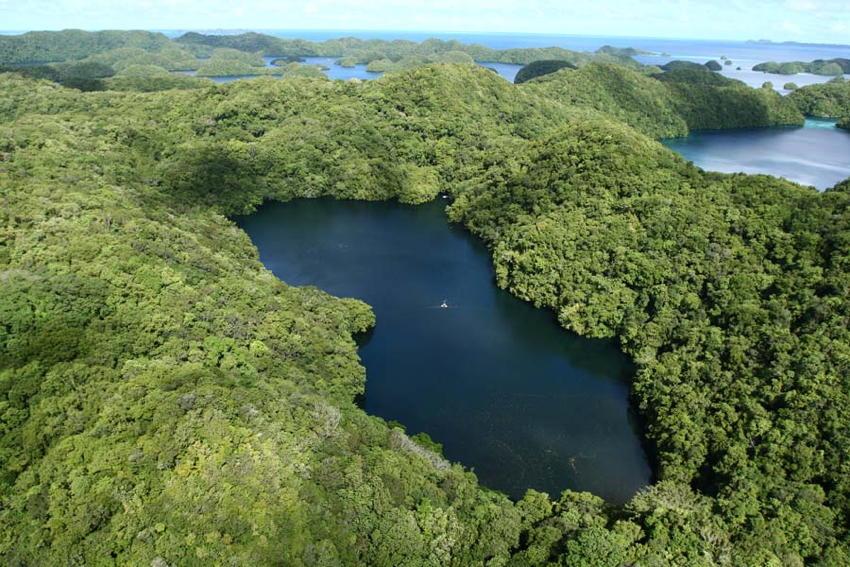 Natural Phenomena Jellyfish Lake