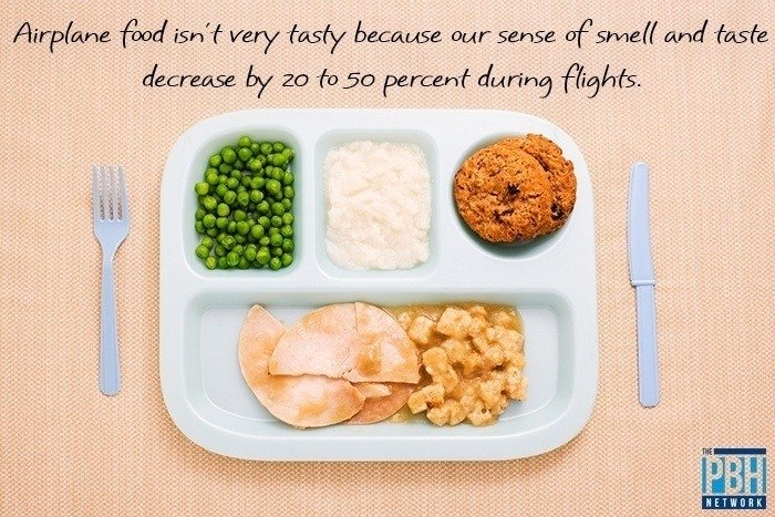 Fascinating Facts About Airplane Food