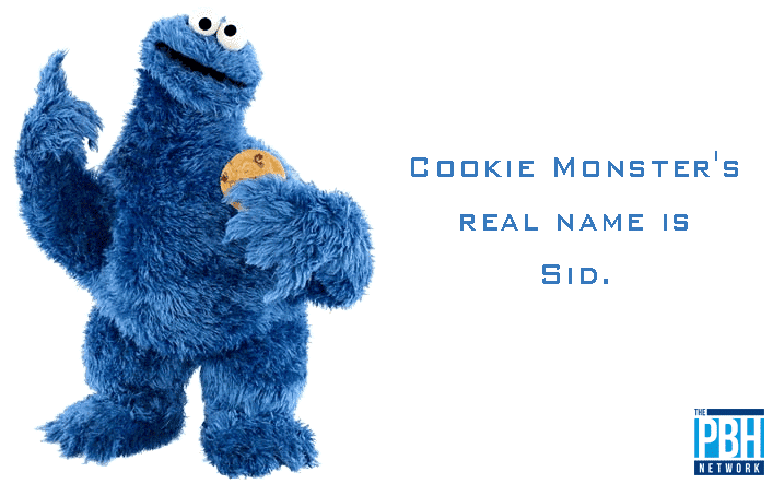 Amazing Facts Cookie Monsters Real Name