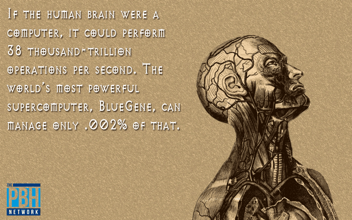 Amazing Facts The Computing Power Of The Brain