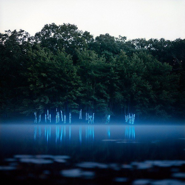 Barry Underwood Glowing Trees