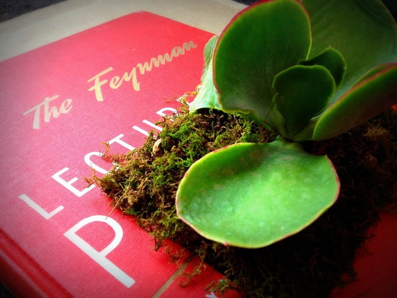 Sherri Green Book Art
