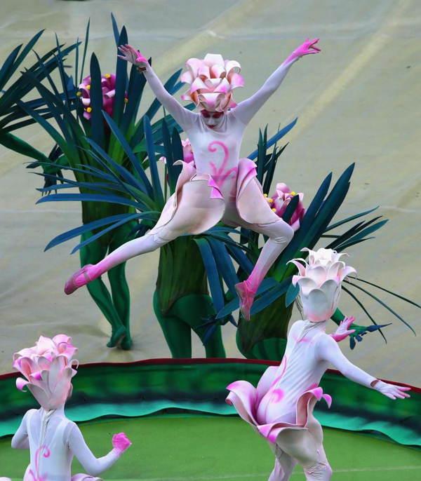 Brazil World Cup Pink Dance