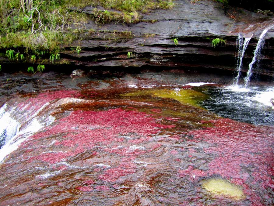 River Of Five Colors Deep Pool