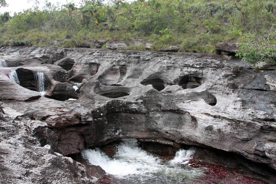 Photographs Of The Caño Cristales