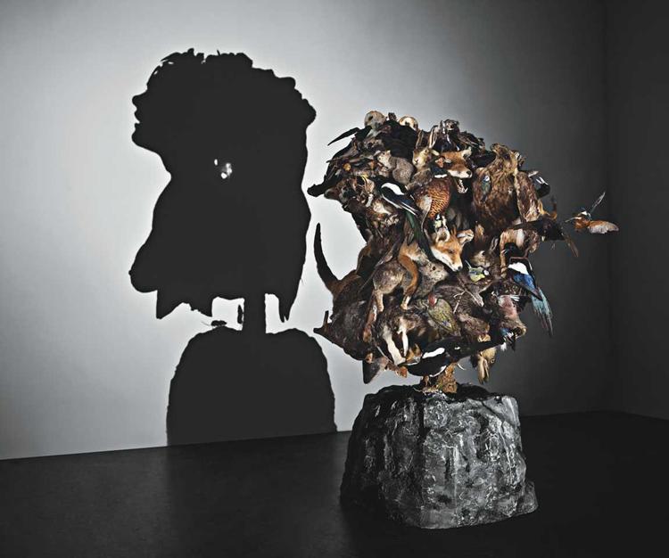 Shadow Art Wildlife