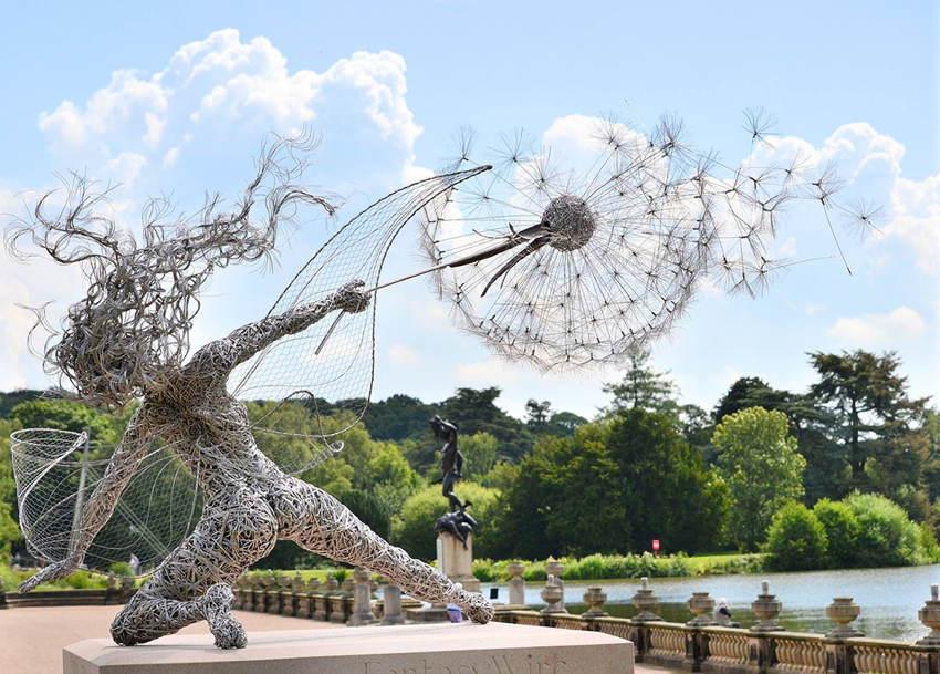 Steel Fairies Dandelion
