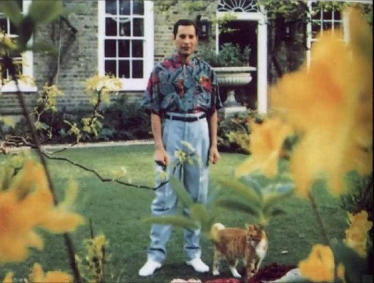 Last Known Photographs Freddie Mercury