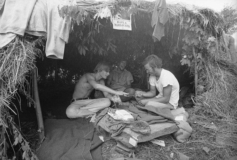 Grass Hut At Woodstock