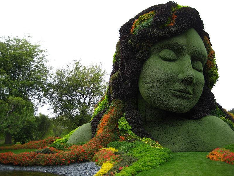 Incredible Mosaiculture