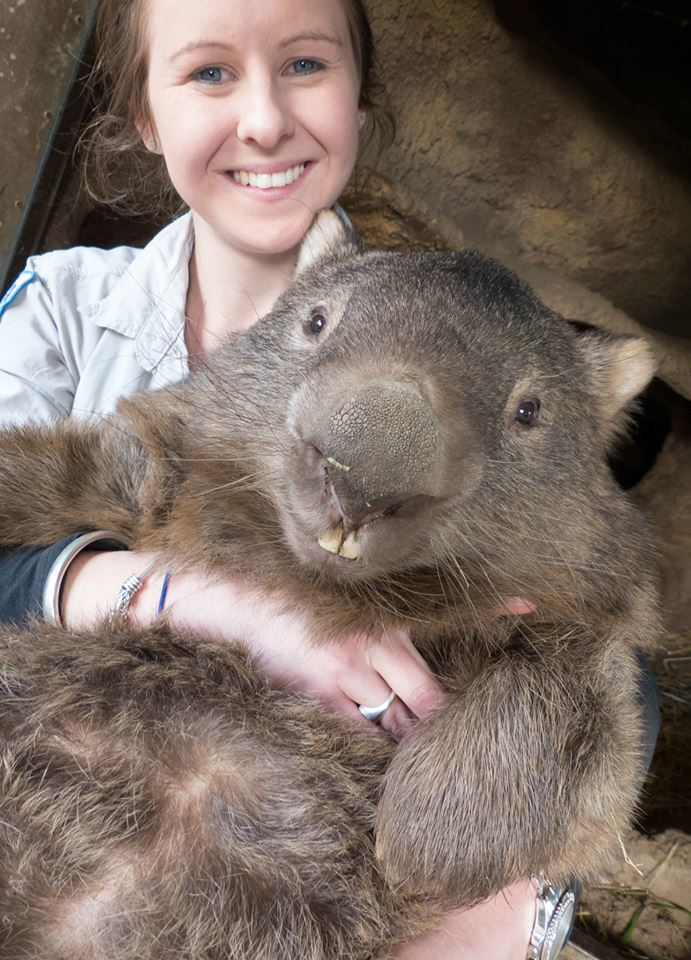 Oldest Wombat Close