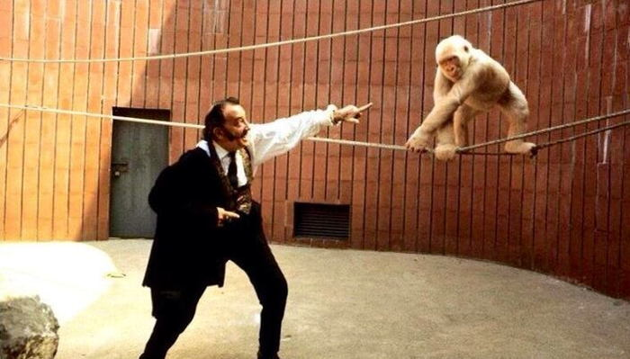 Dali With A Monkey