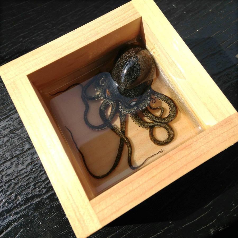 Keng Lye Octopus Box