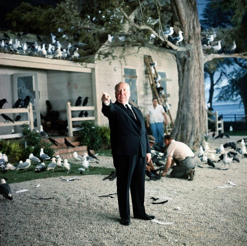 Albert Hitchcock On The Set Of Birds