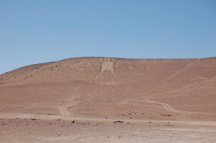 Atacama Desert Giant