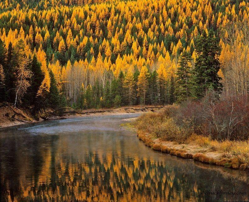 McDonald Creek Colorful Fall Photos