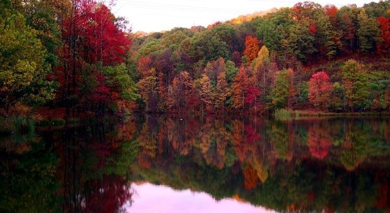 Beautiful Fall Photos