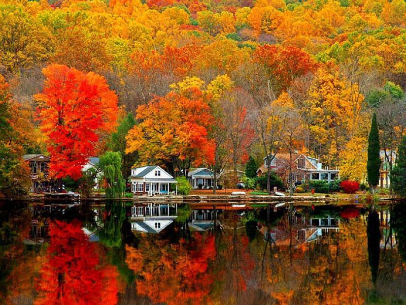 Autumn Reflection on Water