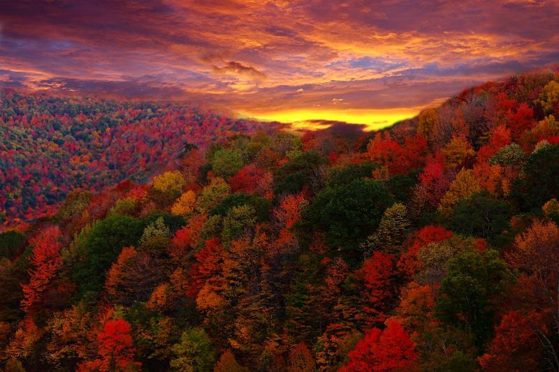 Colorful Fall Photos at Sunset