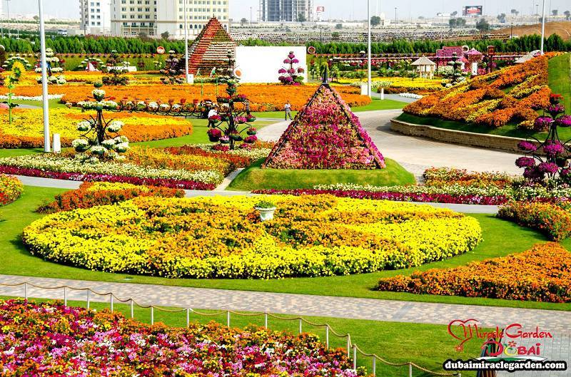 Incredible Dubai Miracle Garden