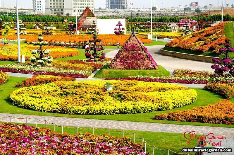 Incredible Dubai Miracle Garden