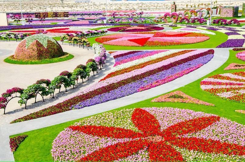 Dubai Miracle Gardens Around The World