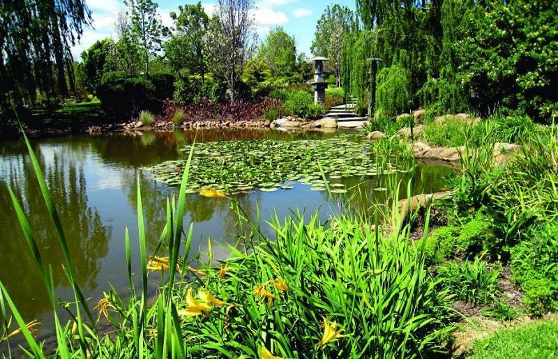 Delightful Australian Hunter Valley Gardens