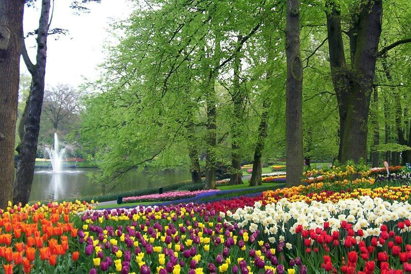 A World of Gardens