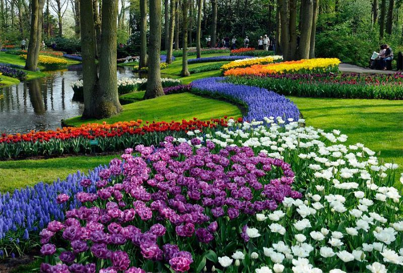 Keukenhof Gardens Around the World