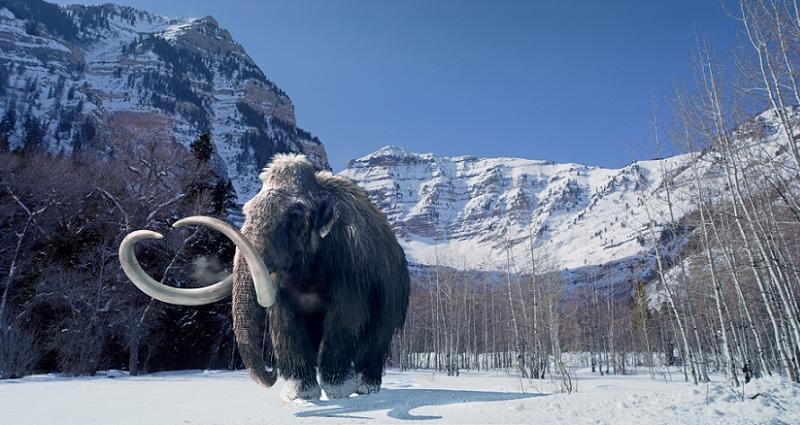 World Before God Woolly Mammoth