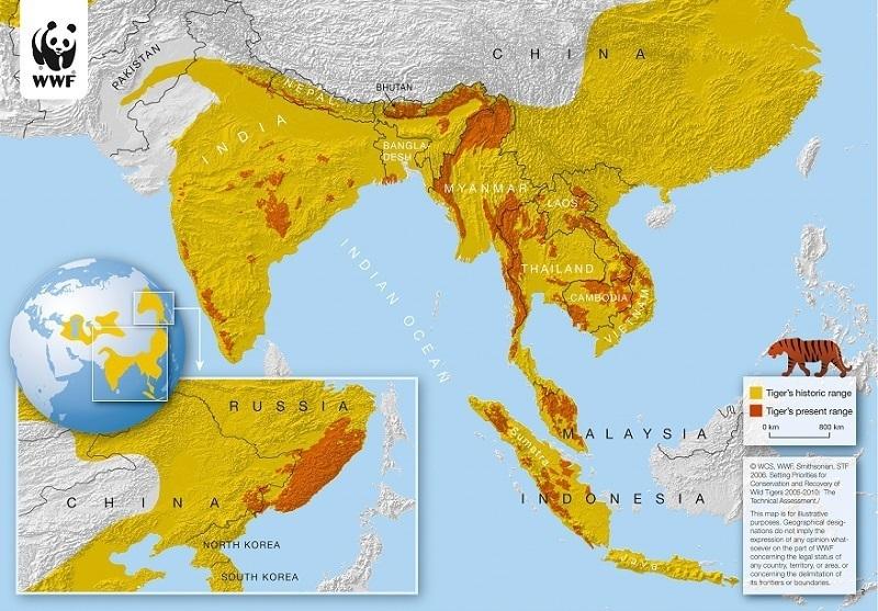 Tiger Range Countries