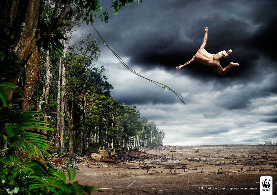 WWF Rain Forest Advertisement