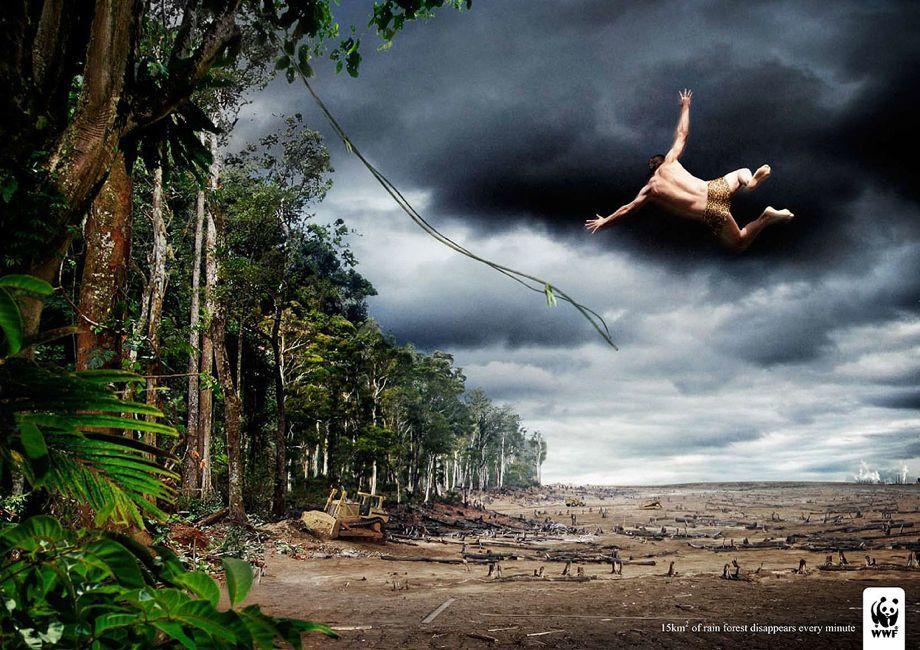 WWF Rain Forest Advertisement