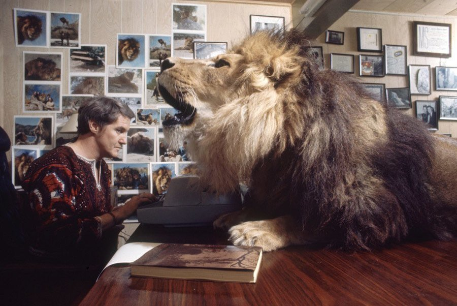 Pictures Of Tippi Hedren's Lions