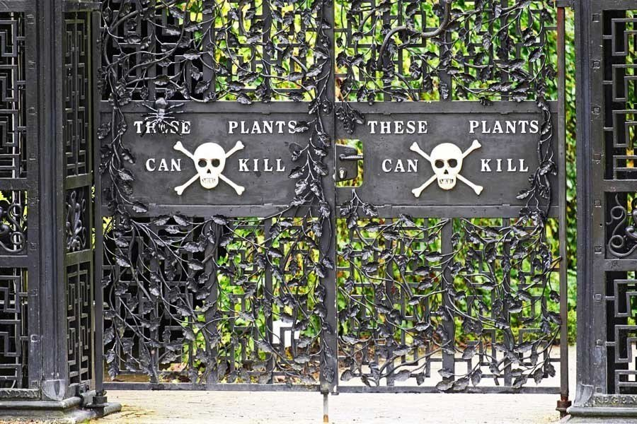 Poison Garden Entry Gate